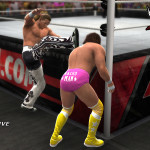 Novità WWE 14