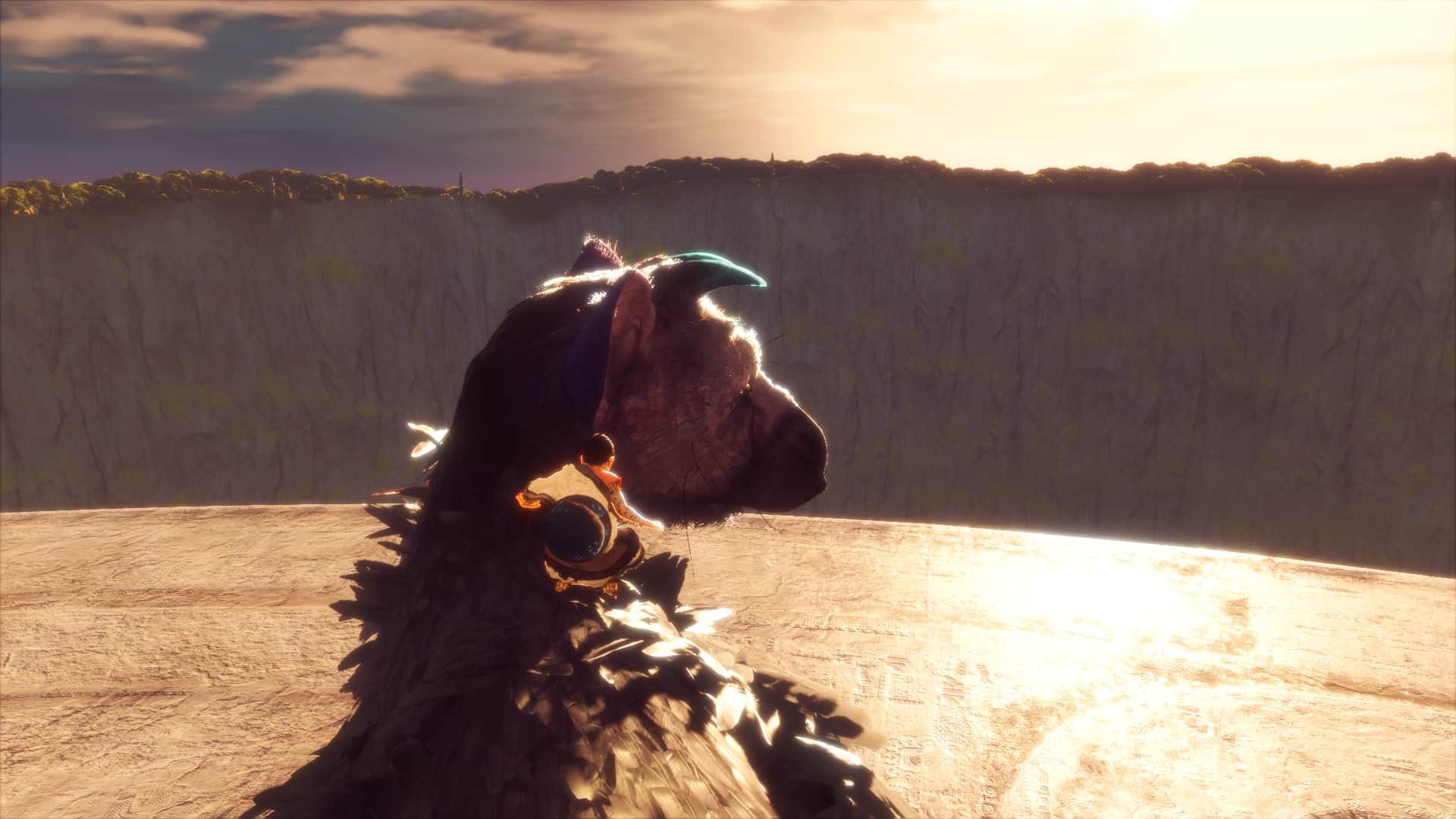 The Last Guardian screenshot 12